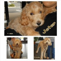 Jeter - growing up !!!