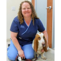 Robyn and Ace the Bassett Hound