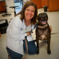Sadie is one of Dr.E's favorite patients !