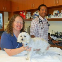 Sweet Dolly, Robyn, and Dr. Brewer (Veterinary Cardiologist)